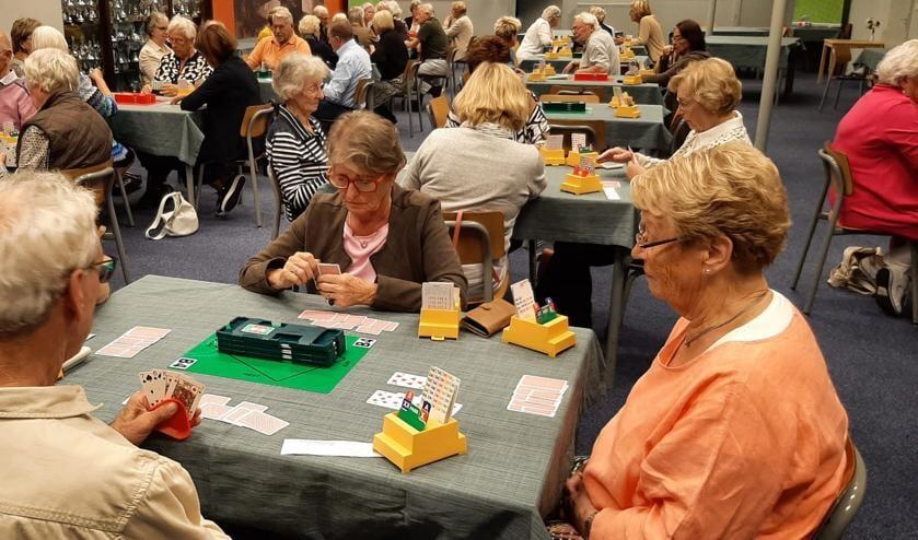 <p>Speelmiddag bridgeclub. (foto: L.Hollander)</p>